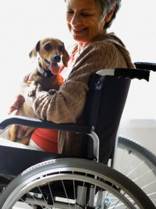 Woman_in_wheelchair_petting_dog